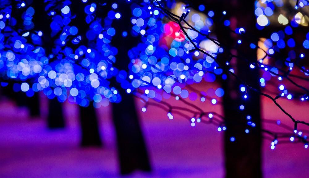 christmas-lights-on-trees-1000x576