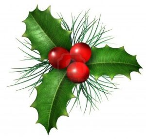 christmas-holly-images-i9m9nujm